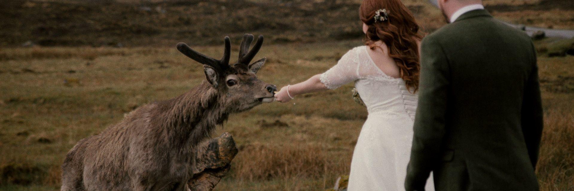Glencoe-elopement-videographer-cinemate-films-05